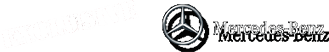 Mercedes-Benz rental with driver